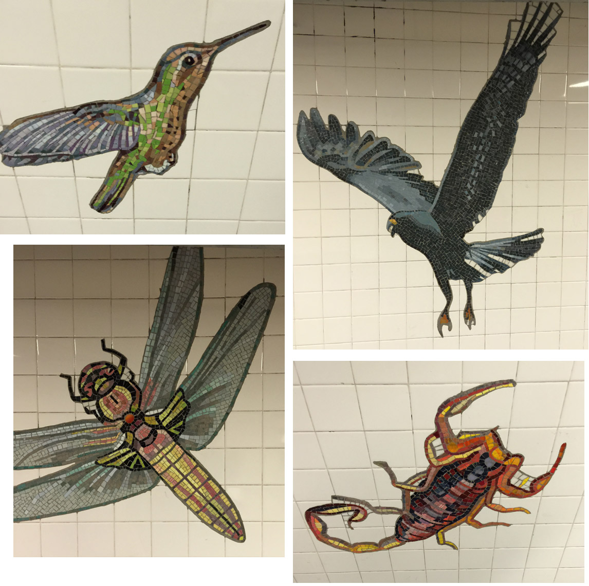 Mosaics on the wall in the New York Subway